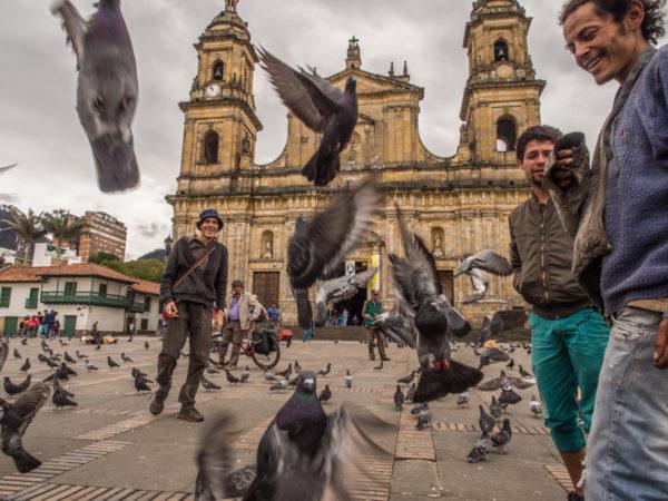 Gołębie na głównym placu w Bogocie, Plaza de Armas