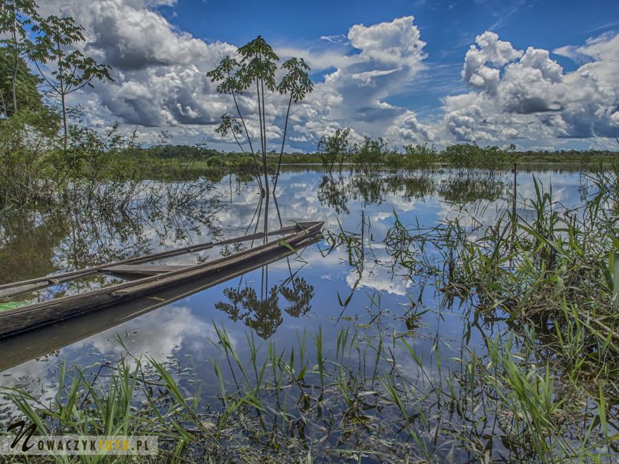 Wycieczka do dżungli amazońskiej, widok na rzekę